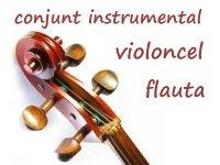AVUI: AUDICIONS DE L´AULA DE VIOLONCEL, FLAUTA I EL CONJUNT INSTRUMENTAL ADULTS