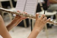 Federació Catalana de Societats Musicals: Nova represa. Protocol d´actuació
